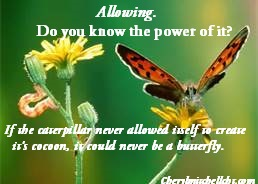 Allowing butterfly
